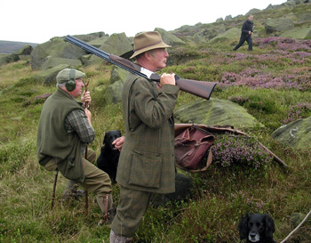 Hunt Saboteurs disrupt a grouse shoot on the moors