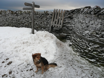 Jess on the summit of an icy Pen-y-ghent