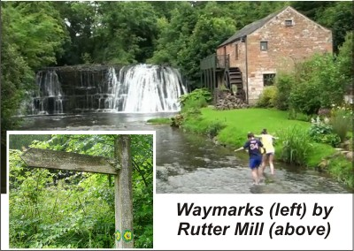 Waymarks at Rutter Mill
