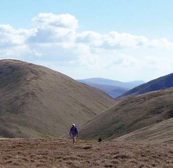 The northern Howgill Fells