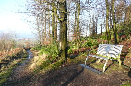 Helen Handley seat on the lower level alternative route to Flasby Fell